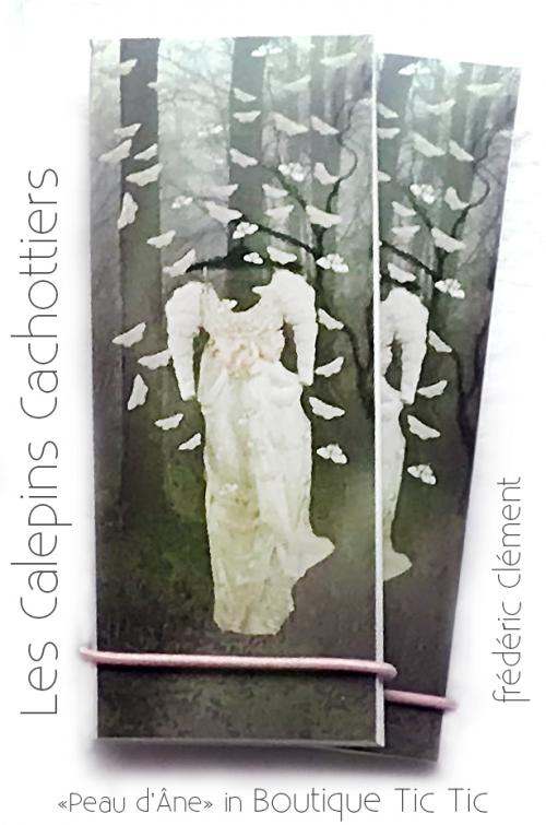 papier, papillon,bijou,robe,peaudane, conte,fredericclement, cachotterie,lacachotterie, galerie, beauté , vanité,