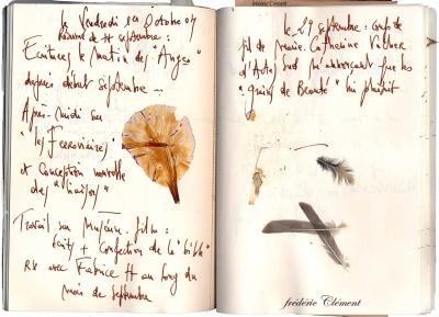papier, papillon, bijou, fredericclement, lacachotterie, galerie, beauté , vanité,