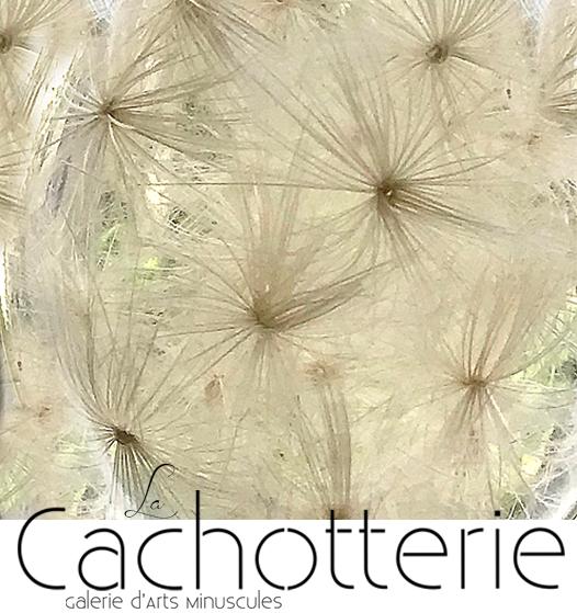 La Cachotterie Chardon.png